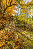 Katy Trail near Rocheport, MO - C1-0378 - 72 ppi-3