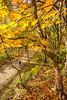 Katy Trail near Rocheport, MO - C2-0012 - 72 ppi