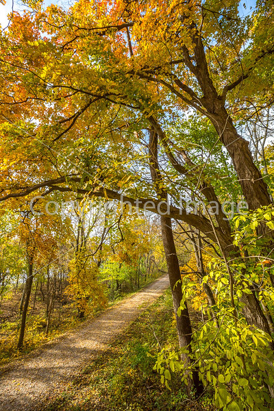 Katy Trail near Rocheport, MO - C1-0383 - 72 ppi-2