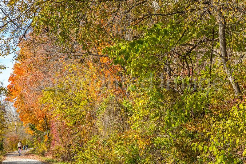Katy Trail near Rocheport, MO - C3-0089 - 72 ppi