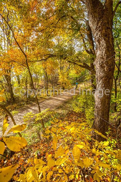 Katy Trail near Rocheport, MO - C2-0164 - 72 ppi