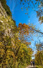Katy Trail near Rocheport, MO - C1-0082 - 72 ppi