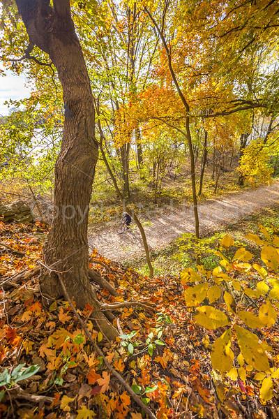 Katy Trail near Rocheport, MO - C2-0086 - 72 ppi
