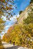Katy Trail near Rocheport, MO - C1-0228 - 72 ppi