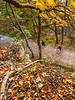 Katy Trail near Rocheport, MO - C2-0003 - 72 ppi-2