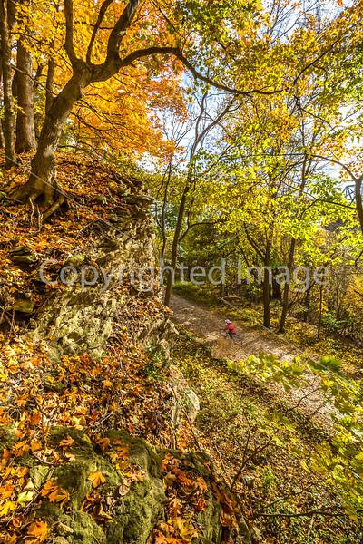 Katy Trail near Rocheport, MO - C1-0378 - 72 ppi