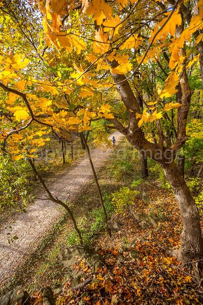 Katy Trail near Rocheport, MO - C2-0043 - 72 ppi