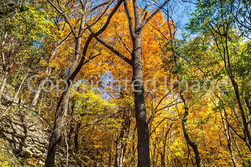 Katy Trail near Rocheport, MO - C1-0008 - 72 ppi