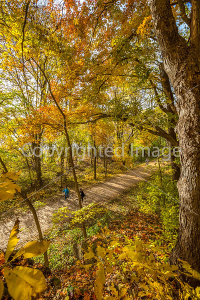 Katy Trail near Rocheport, MO - C2-0167 - 72 ppi