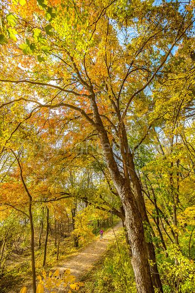 Print - sRGB - Katy Trail near Rocheport, MO - C2-0130 - 300 ppi