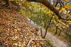 Katy Trail near Rocheport, MO - C2-0004 - 72 ppi