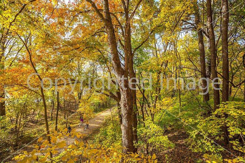 Katy Trail near Rocheport, MO - C2-0144 - 72 ppi