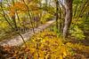 Katy Trail near Rocheport, MO - C2-0083 - 72 ppi