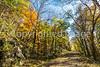 Katy Trail near Rocheport, MO - C1-0004 - 72 ppi