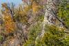 Katy Trail near Weldon Springs trailhead in Missouri - C1-0023 - 72 ppi