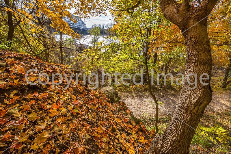 Katy Trail near Rocheport, MO - C1-0391 - 72 ppi