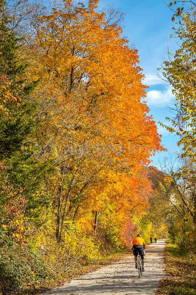 Katy Trail near Rocheport, MO - C3-0061 - 72 ppi