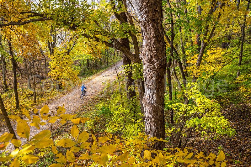 Katy Trail near Rocheport, MO - C2-0095 - 72 ppi