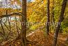Katy Trail near Rocheport, MO - C1-0447 - 72 ppi-2