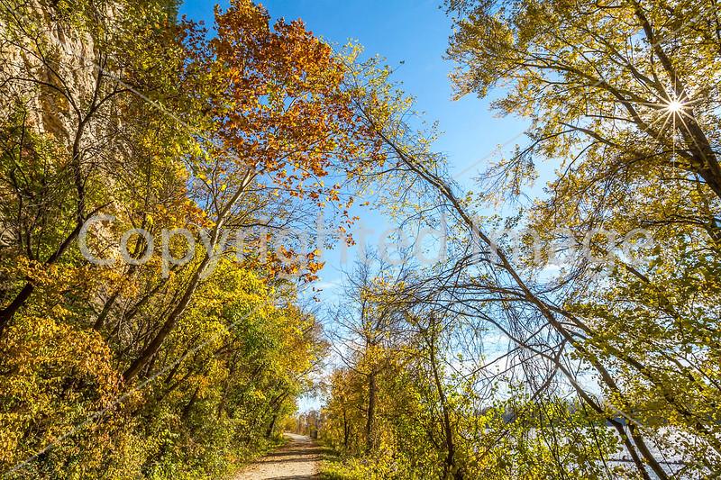 Katy Trail near Rocheport, MO - C1-0063 - 72 ppi