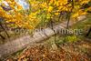 Katy Trail near Rocheport, MO - C1-0485 - 72 ppi