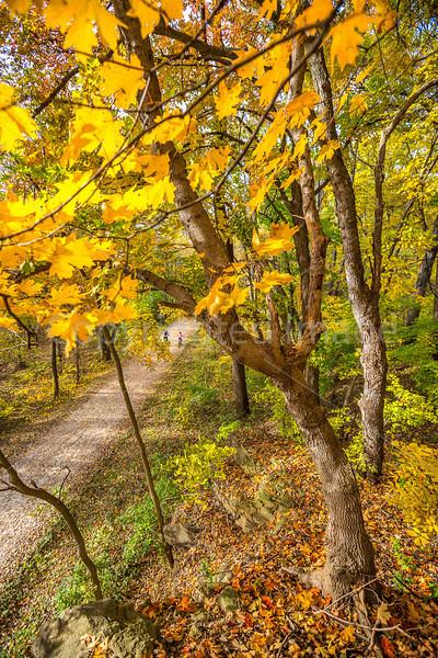 Katy Trail near Rocheport, MO - C2-0036 - 72 ppi