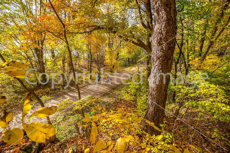 Katy Trail near Rocheport, MO - C2-0165 - 72 ppi