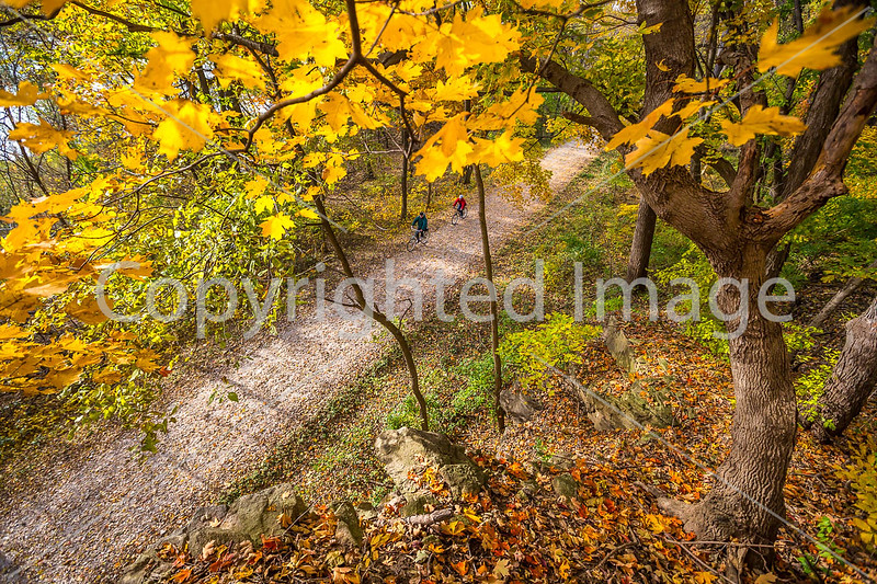 Katy Trail near Rocheport, MO - C1-0480 - 72 ppi