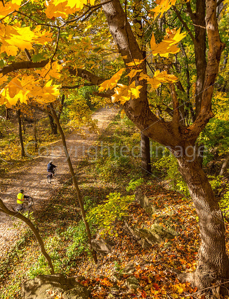 Katy Trail near Rocheport, MO - C2-0062 - 72 ppi-2