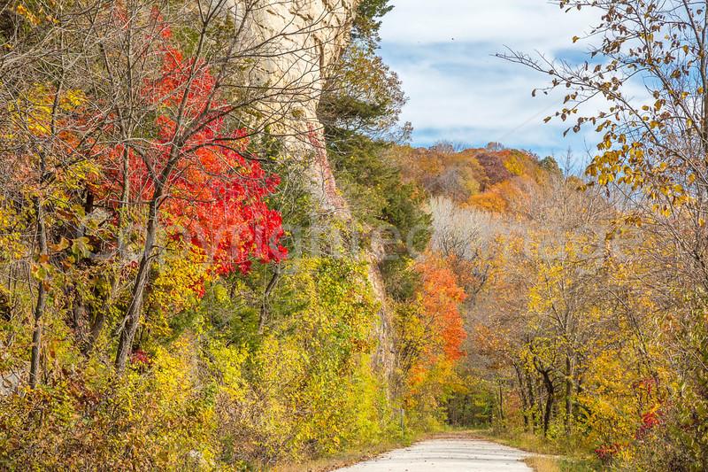 Katy Trail near Rocheport, MO - C3-0137 - 72 ppi