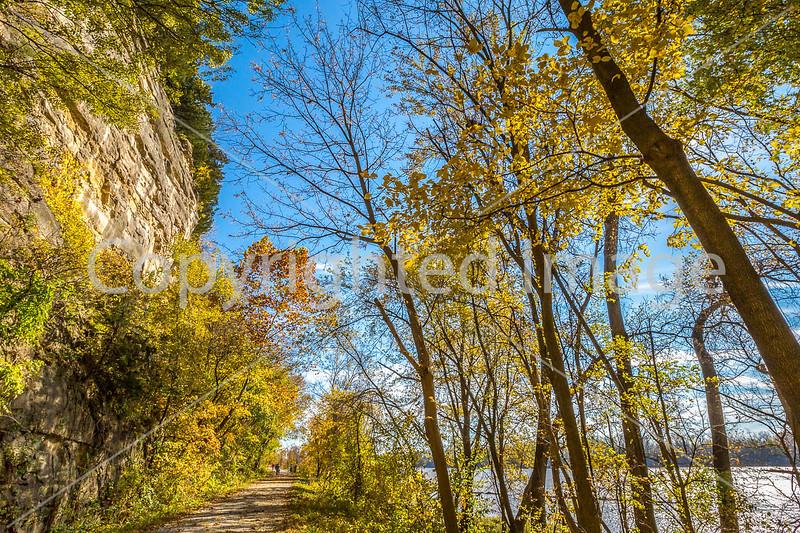 Katy Trail near Rocheport, MO - C1-0036 - 72 ppi