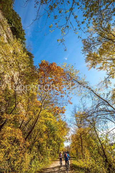 Katy Trail near Rocheport, MO - C1-0081 - 72 ppi