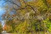 Katy Trail near Rocheport, MO - C1-0261 - 72 ppi
