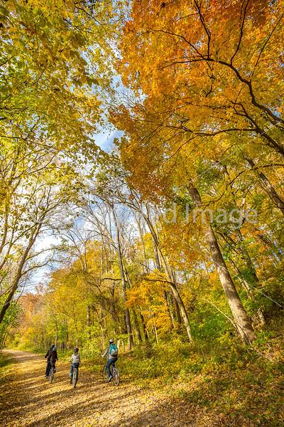 Katy Trail near Rocheport, MO - C1-0373 - 72 ppi