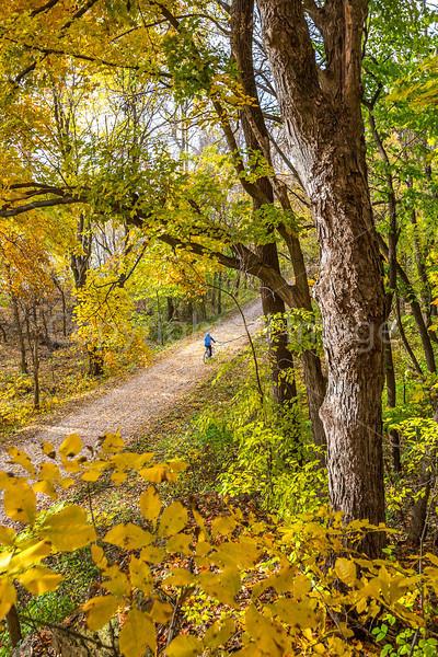 Katy Trail near Rocheport, MO - C2-0097 - 72 ppi