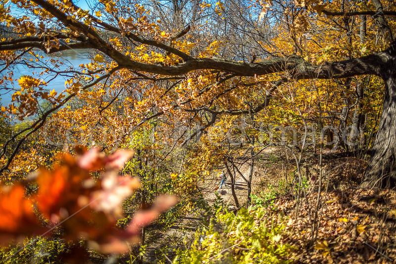 Katy Trail near Rocheport, Missouri - 11-9-13 - C1-0162 - 72 ppi