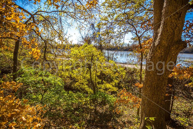 Katy Trail near Rocheport, Missouri - 11-9-13 - C1-0051 - 72 ppi