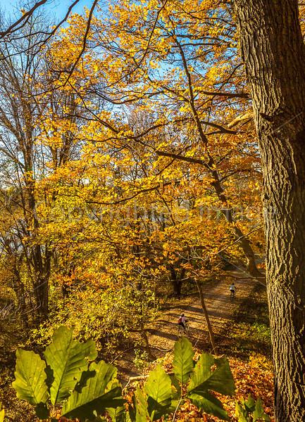 Katy Trail near Rocheport, Missouri - 11-9-13 - C2-0078 - 72 ppi-2