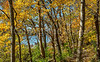 Katy Trail near Rocheport, Missouri - 11-9-13 - C1-0095 - 72 ppi-2