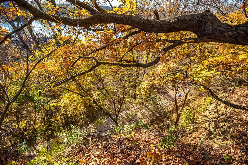 Katy Trail near Rocheport, Missouri - 11-9-13 - C1-0481 - 72 ppi