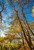Katy Trail near Rocheport, Missouri - 11-9-13 - C1-0071 - 72 ppi