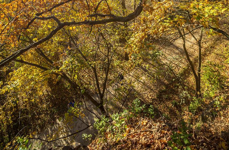Katy Trail near Rocheport, Missouri - 11-9-13 - C1-0477 - 72 ppi