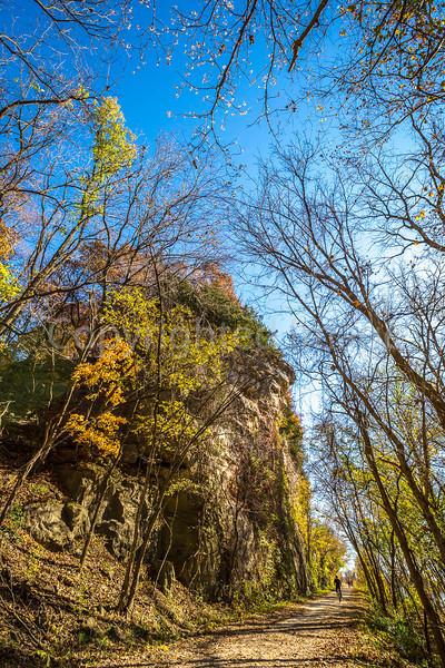 Katy Trail near Rocheport, Missouri - 11-9-13 - C1-0001 - 72 ppi