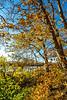 Katy Trail near Rocheport, Missouri - 11-9-13 - C1-0079 - 72 ppi