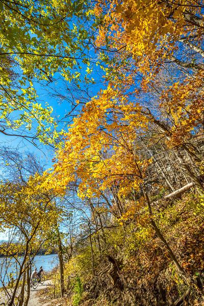 Katy Trail near Rocheport, Missouri - 11-9-13 - C1-0133 - 72 ppi