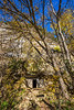 Katy Trail near Rocheport, Missouri - 11-9-13 - C1-0042 - 72 ppi