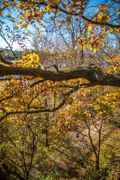 Katy Trail near Rocheport, Missouri - 11-9-13 - C1-0372 - 72 ppi