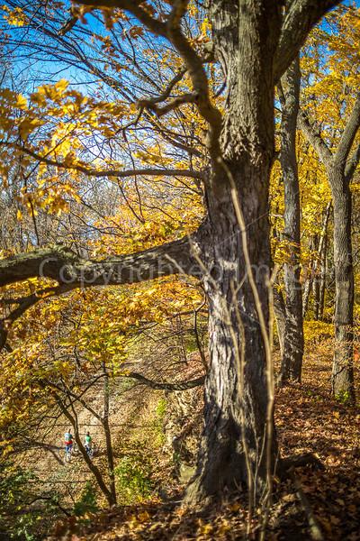 Katy Trail near Rocheport, Missouri - 11-9-13 - C1-0292 - 72 ppi