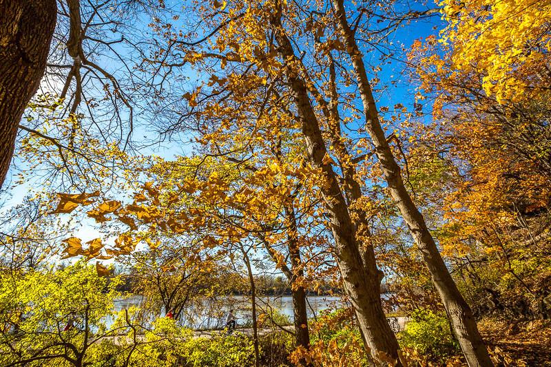 Katy Trail near Rocheport, Missouri - 11-9-13 - C1-0117 - 72 ppi
