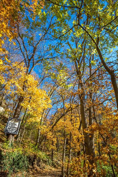 Katy Trail near Rocheport, Missouri - 11-9-13 - C1-0045 - 72 ppi